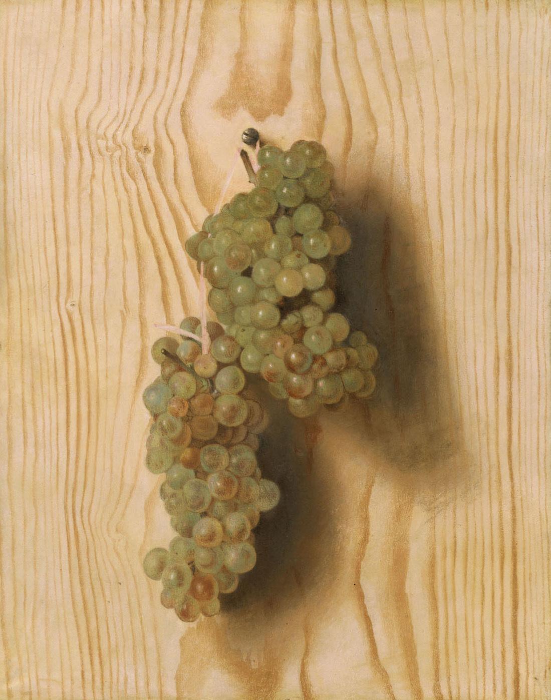 Weintrauben von Jean Etienne Liotard