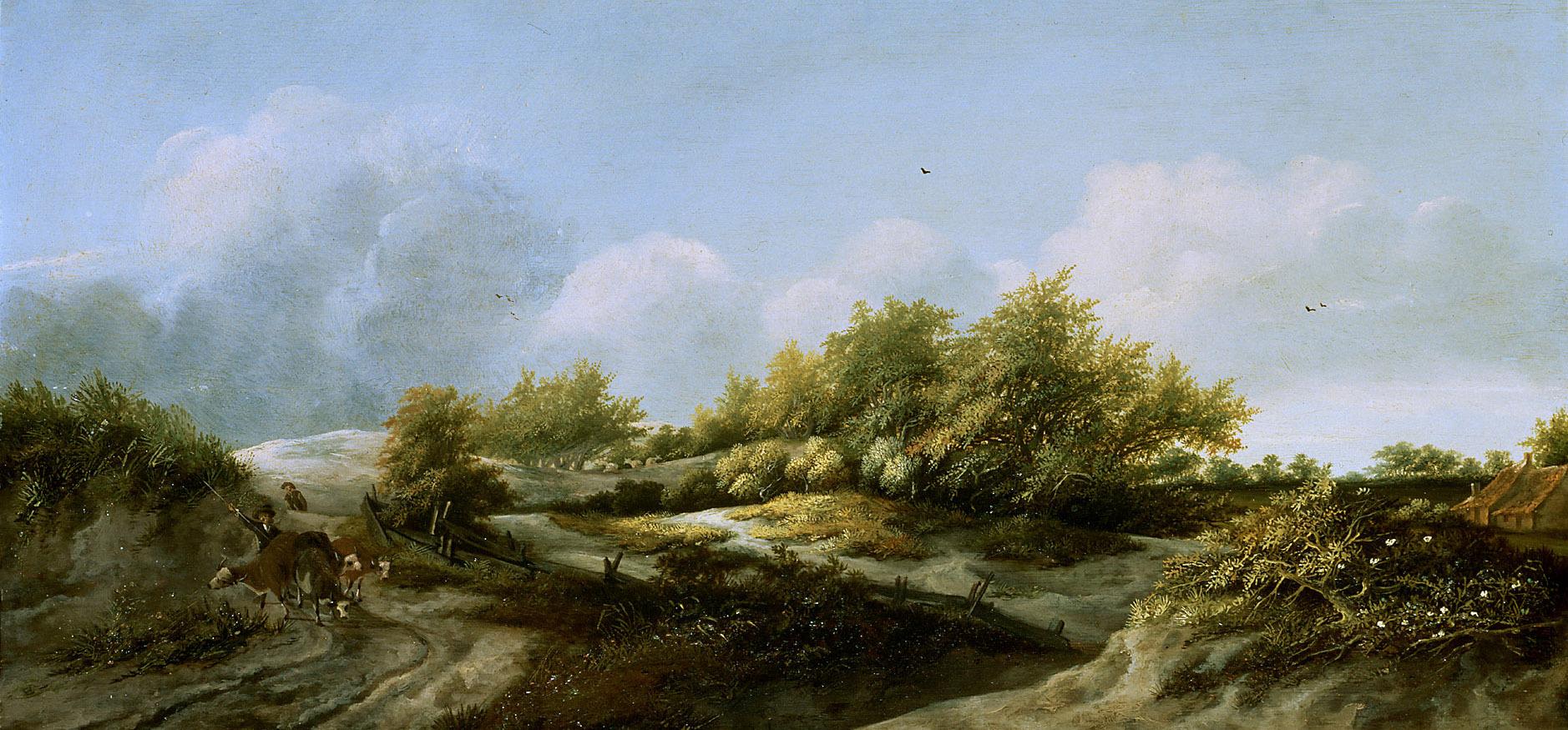 Dünenlandschaft von Jan III. van der Meer