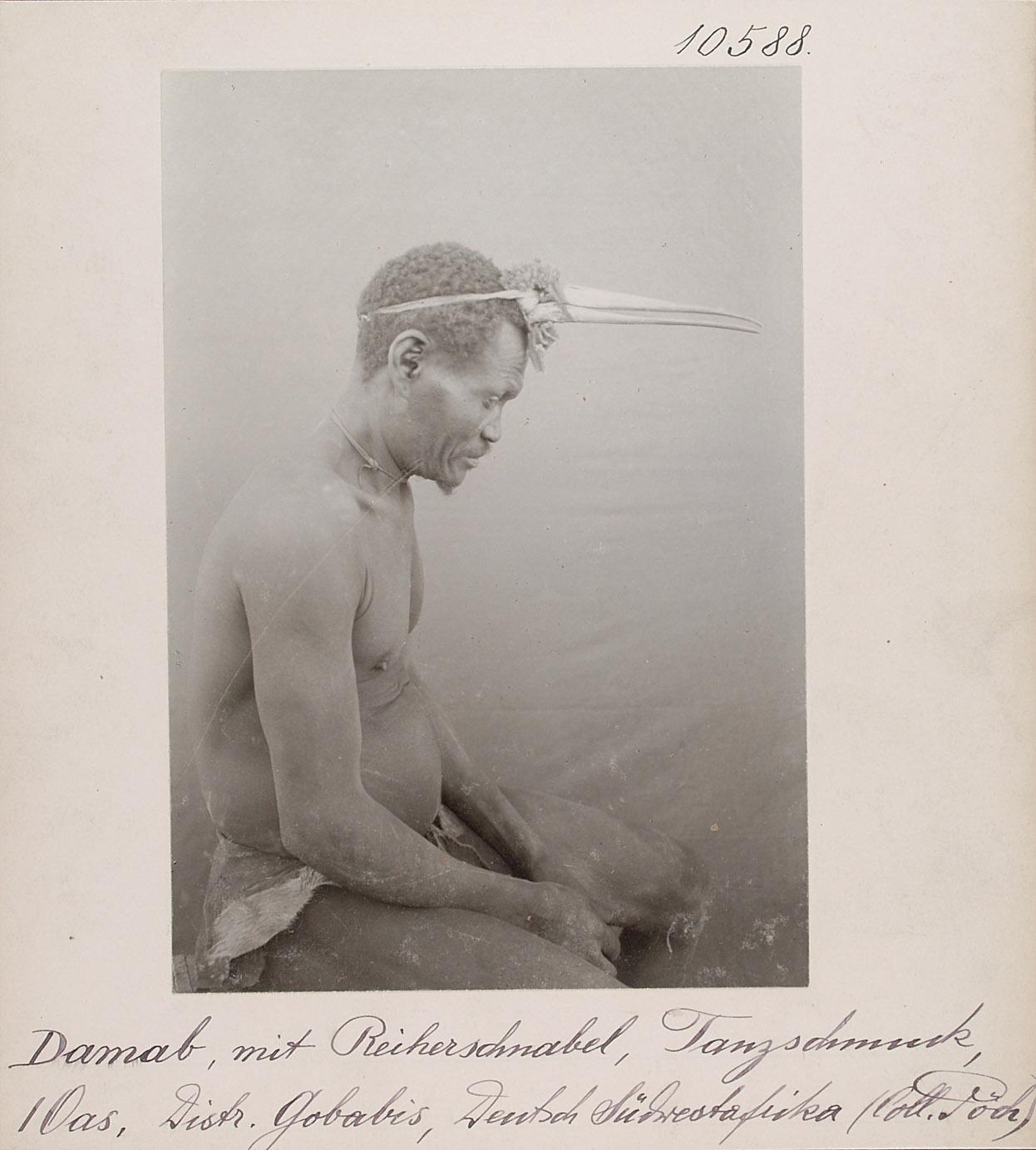 Damab, mit Reiherschnabel, Tanzschmuck, I Oas, Distr. Gobabis, Deutsch-Südwestafrika