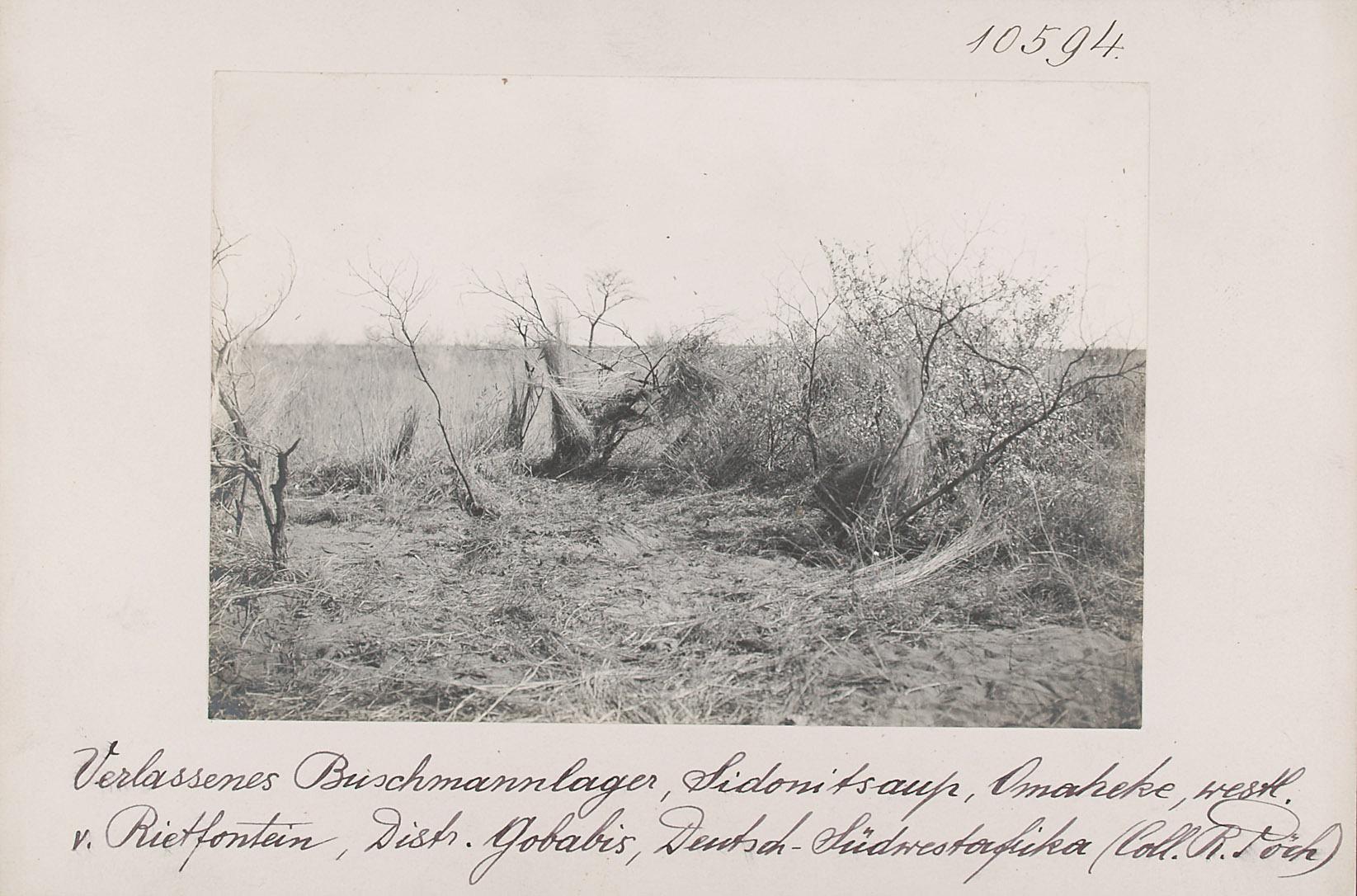 Verlassene Sansiedlung, Sidonitsaup, Omaheke, westl. v. Rietfontein, Distr. Gobabis, Deutsch-Südwestafrika von Rudolf Pöch