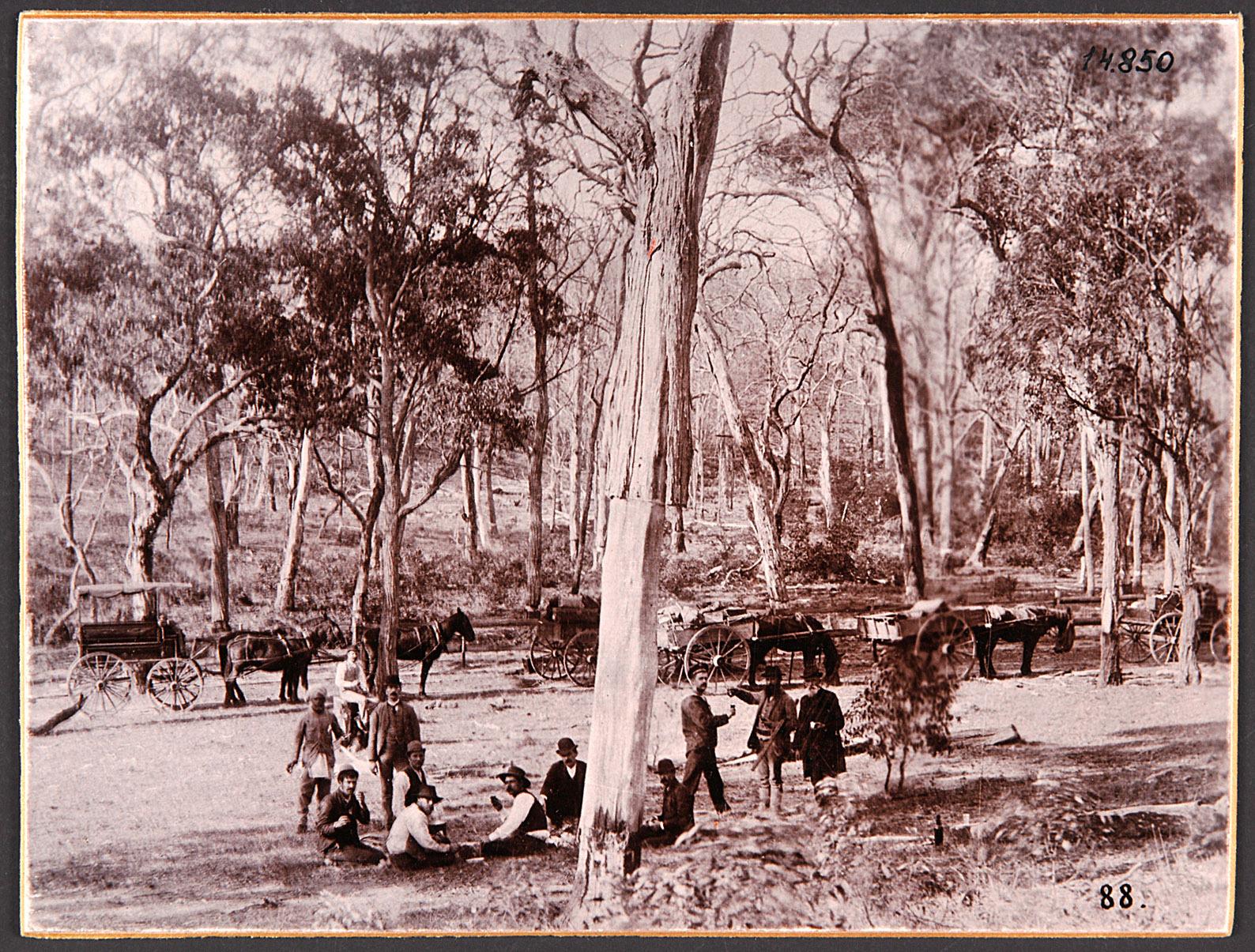 """Australien, """"Im australischen Busch"""". 25.5.1893 von Eduard Hodek jun."""