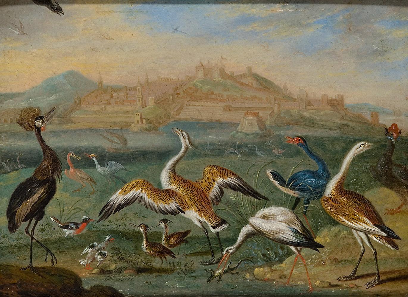 Ansichten aus den vier Weltteilen mit Szenen von Tieren: Tanger von Ferdinand van Kessel