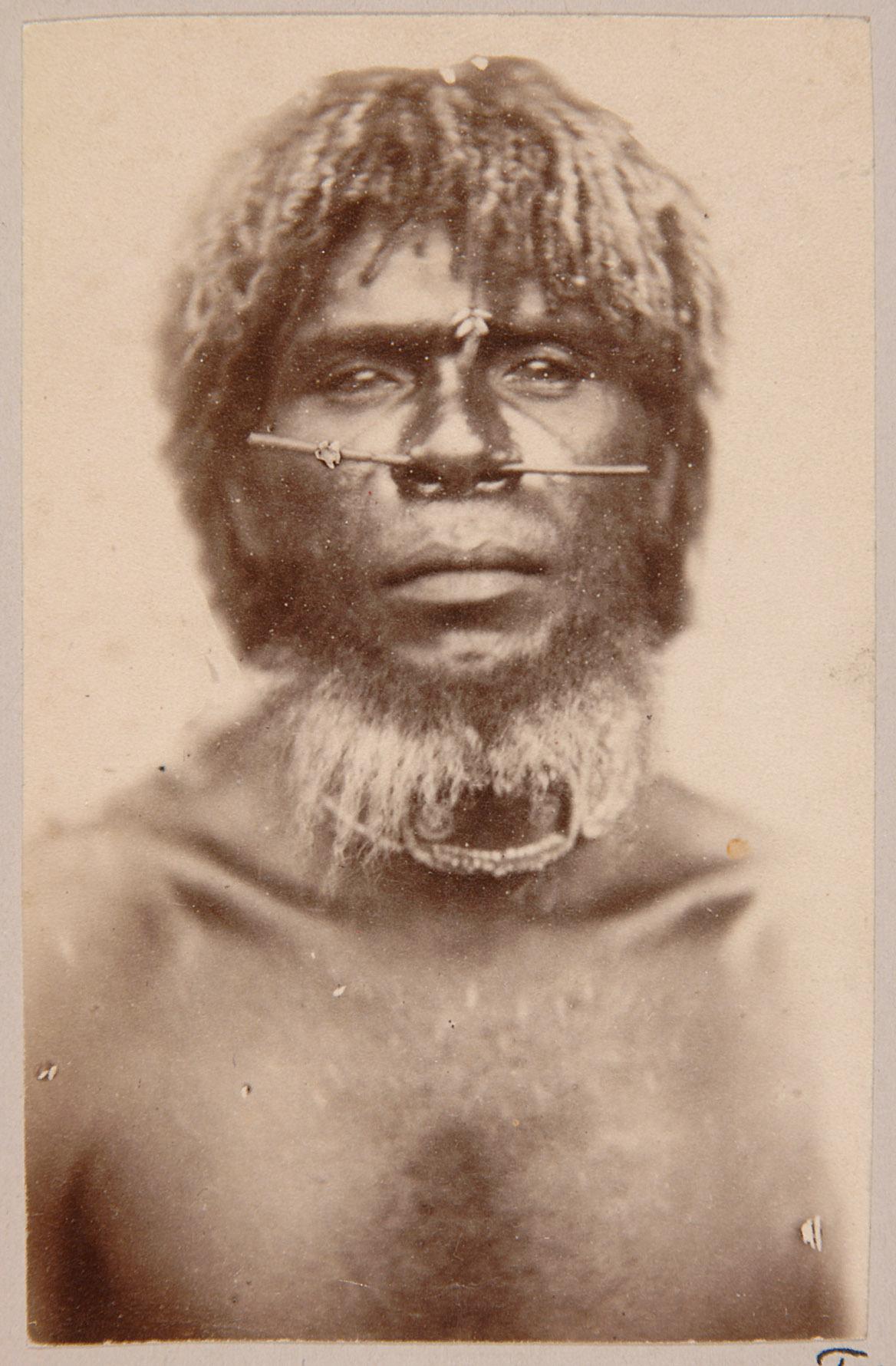 Tui Wone, Mann aus Beretni, Deutsch-Neuguinea von Otto Finsch
