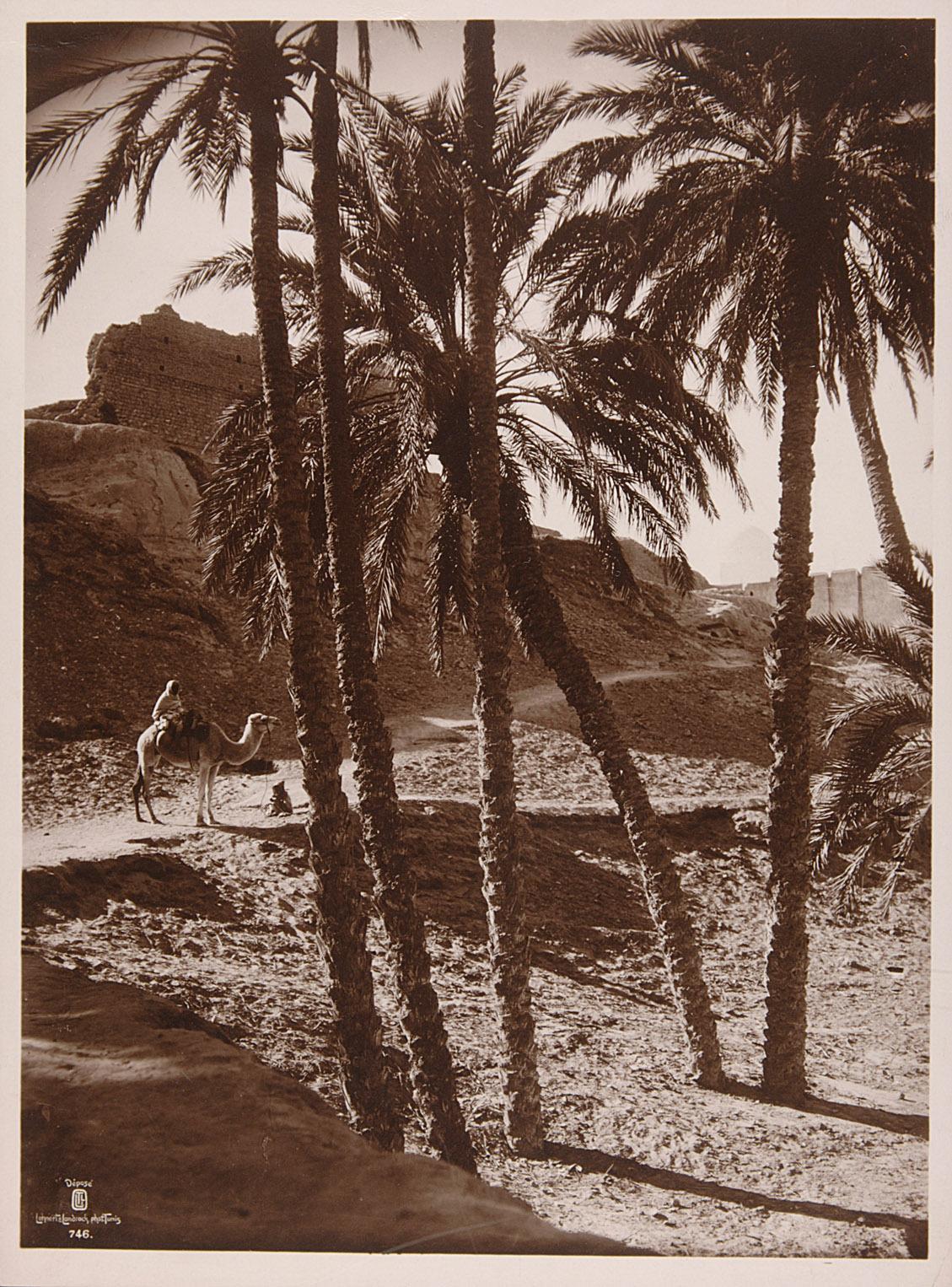 Kamelreiter vor Mauerwerk von Lehnert & Landrock