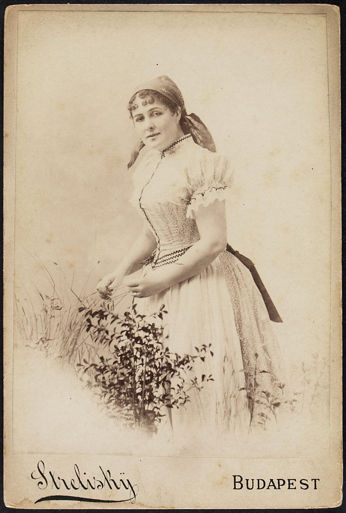 Louise Blaha von Strelisky, Budapest