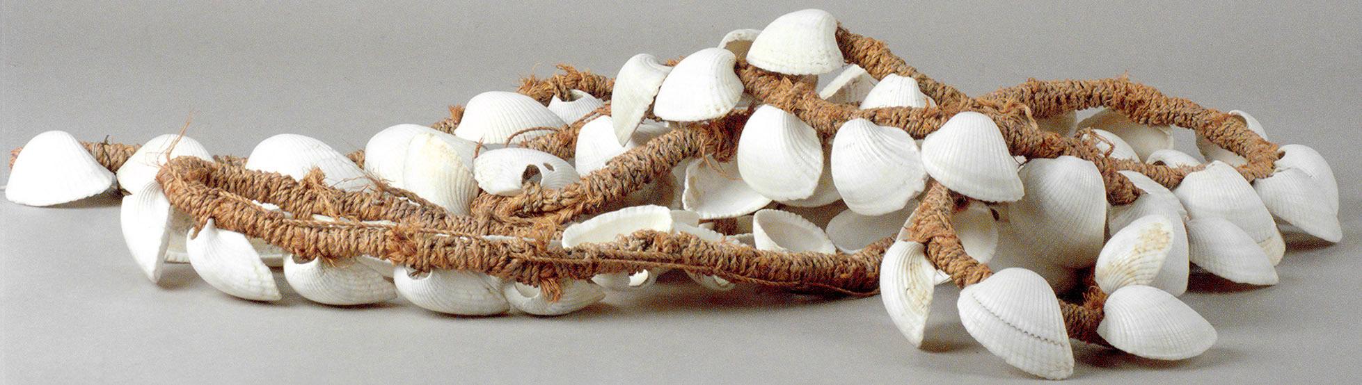 Netzsenker  mit Muschelschalen