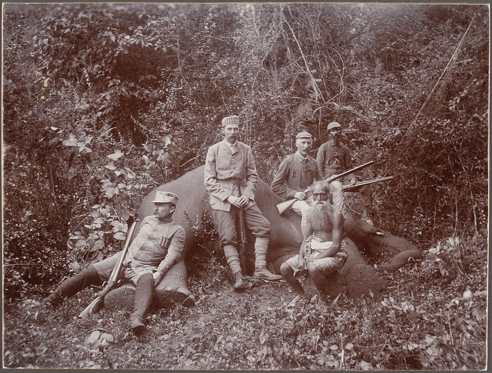 Sr k.u.k. Hoheit mit Mr. Pirie u. Mr. Murray beim erlegten Elephanten von Charles Kerr