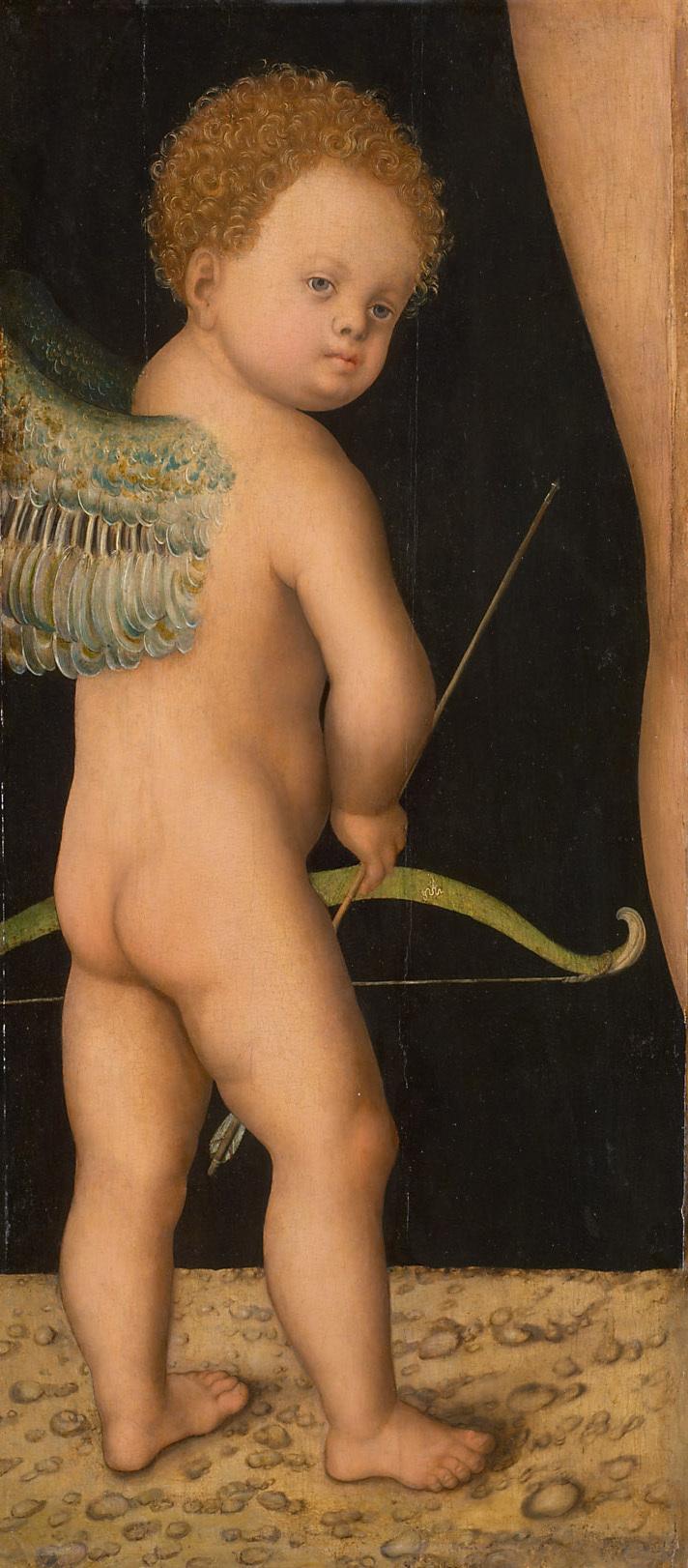 Amor von Lucas Cranach d. Ä.