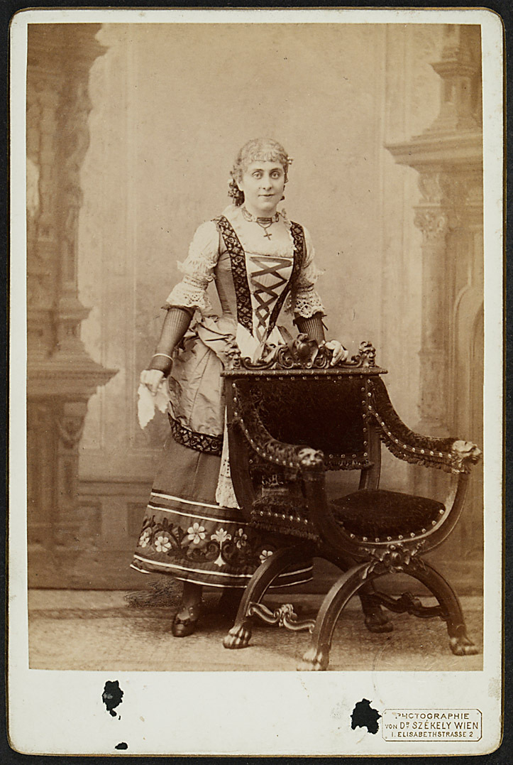 Stella Hohenfels von Dr. Szekely, Wien