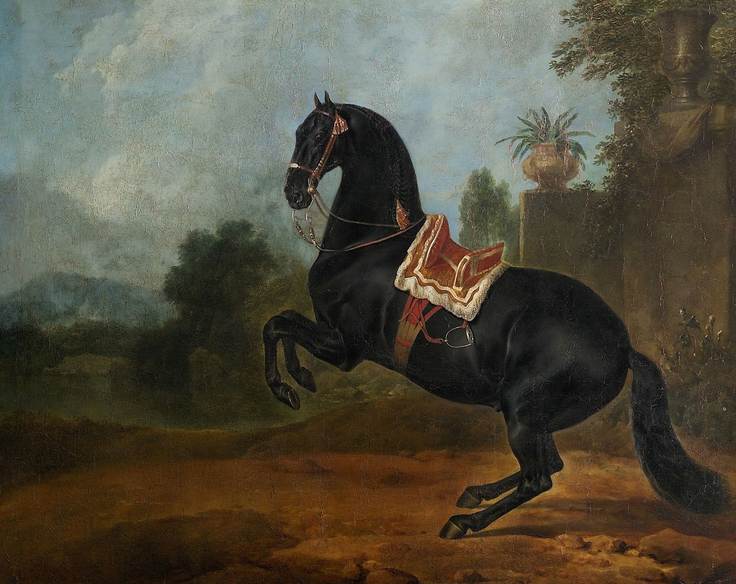 Rappe in der Levade von Johann Georg de Hamilton