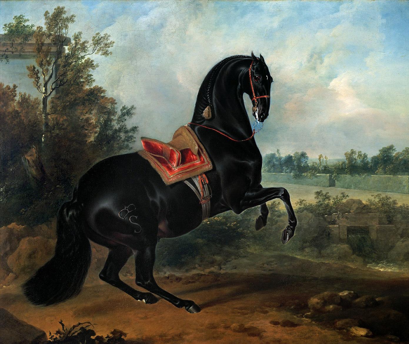 Hengst in der Levade von Johann Georg de Hamilton
