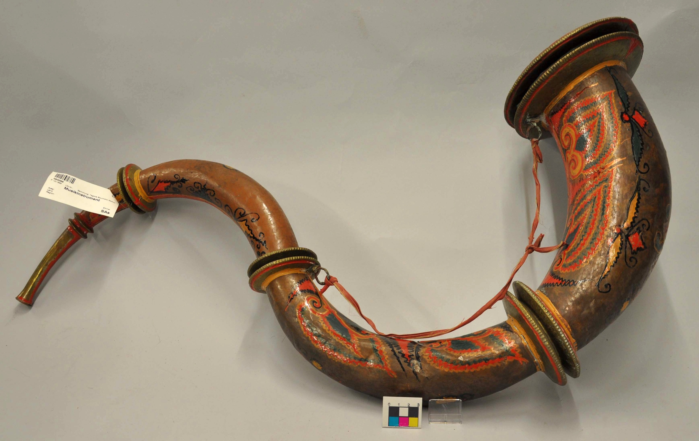 Musikinstrument, Rana Sringa