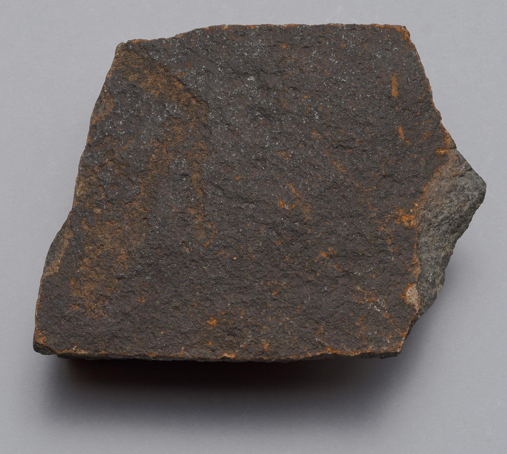 Felsgravierung: Rehantilope, Fragment