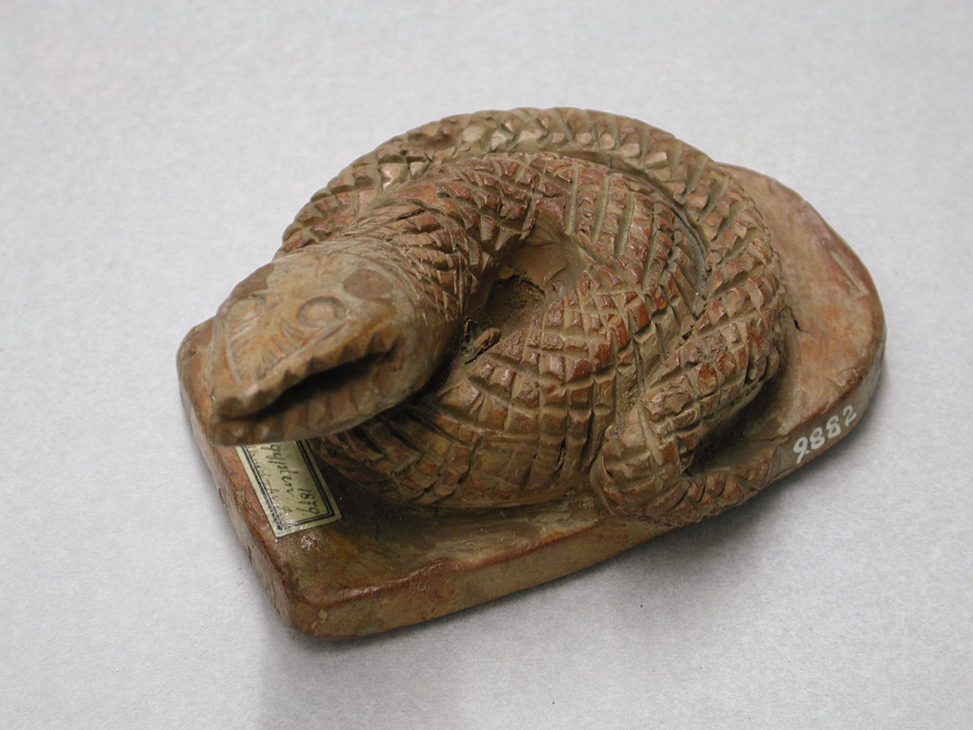 Fußraspel in Gestalt einer Schlange