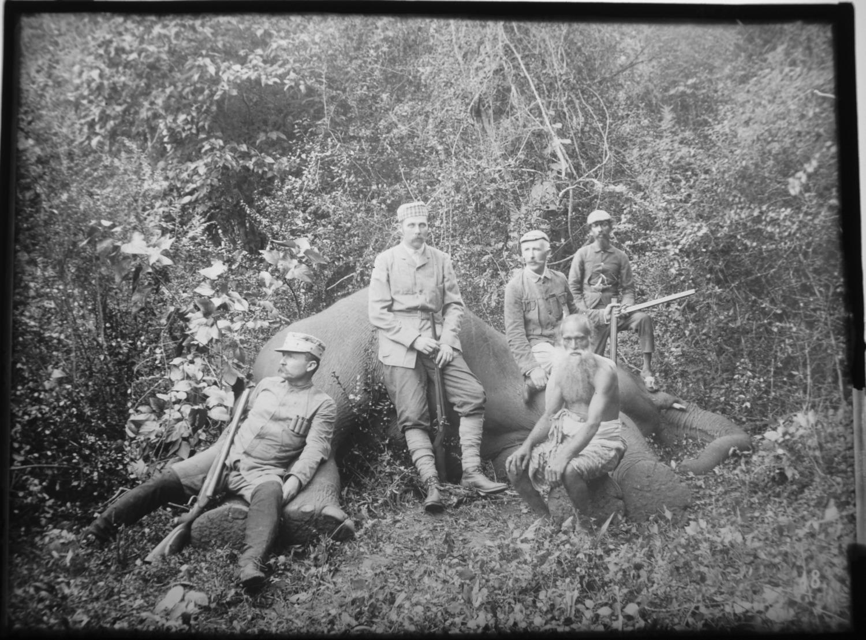 Sr k.u.k. Hoheit mit Mr. Pirie u. Mr. Murray beim erlegten Elephanten von Eduard Hodek jun.